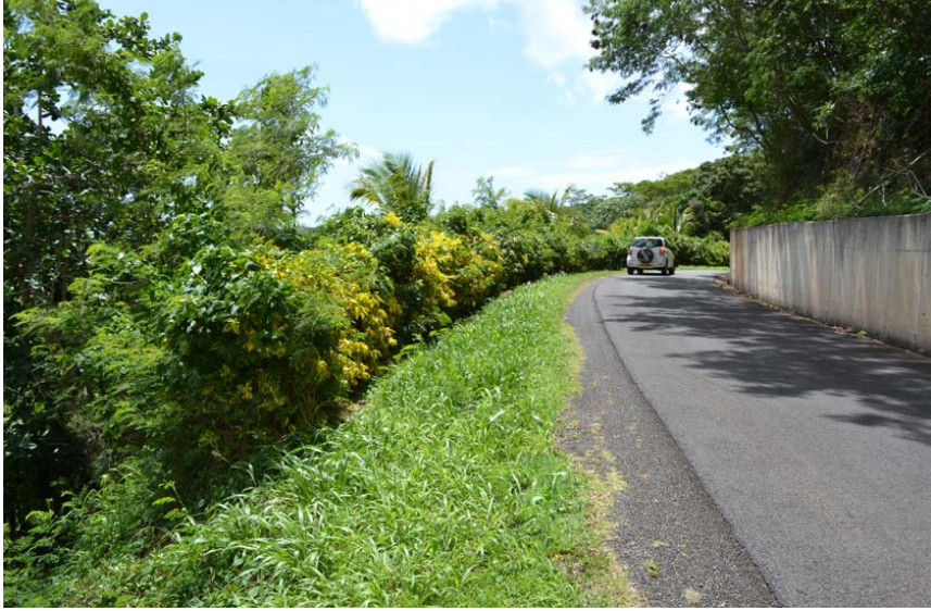 1 Acre Of Land For Sale In Hope Vale St George's
