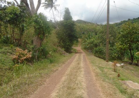 Affordable Lots for Sale In Marlmount St David's
