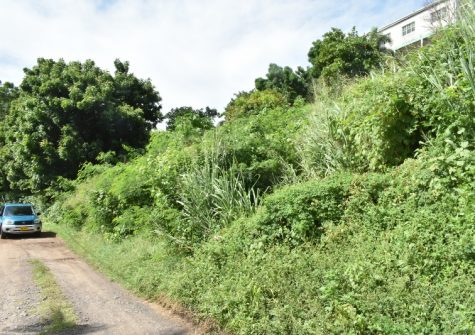 Affordable Lot For Sale In Grand Anse