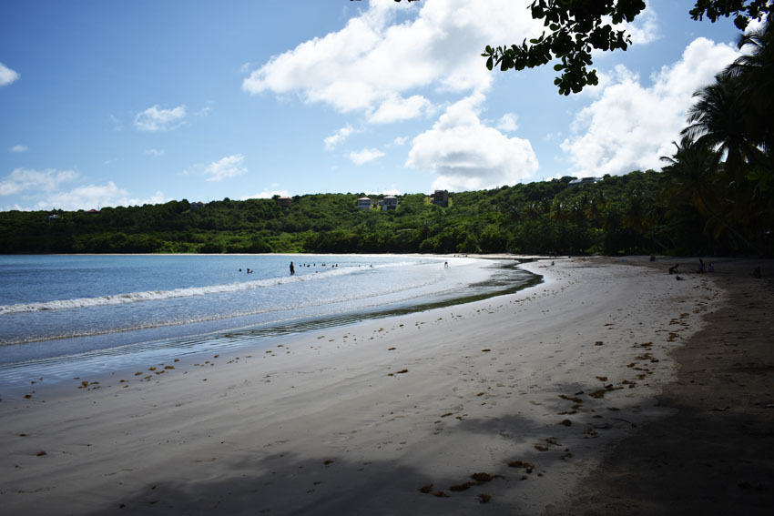 50+ acres For Sale In St David's Grenada (Beachfront)