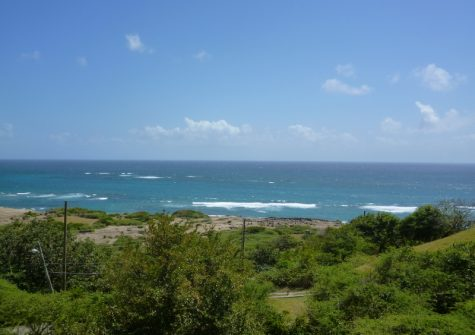 Large Carriacou Lot For Sale
