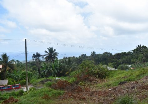 3 Acres For Sale In St Andrews