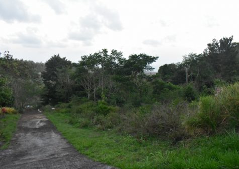 Location A- Affordable Residential Lots for Sale  In St David's (See Price Details)