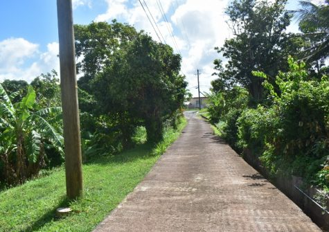 Large Lot Mt Airy St George's